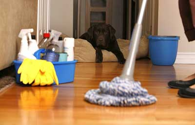 contractor software - house_cleaning